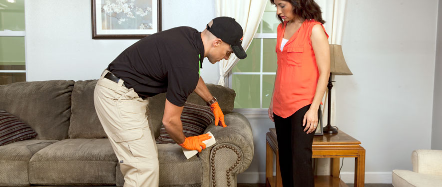 Canoga Park, CA carpet upholstery cleaning