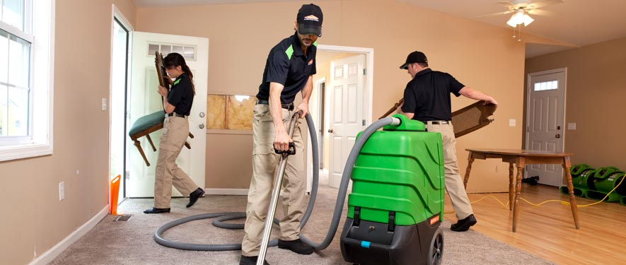 Canoga Park, CA cleaning services